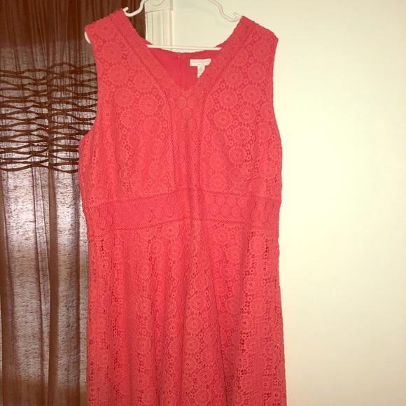 2128164b8925 Charter Club Dresses | Sleeveless Coral Lace Dress Nwt | Poshmark